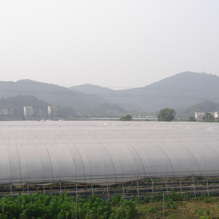 Plant Cover with 100%Polyprpopylene Spunbond Nonwoven Fabric