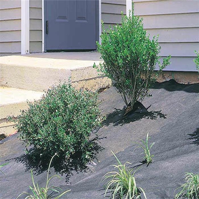 High Quality Non Woven Polypropylene for Garden Cover