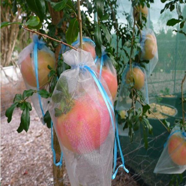 Polypropylene Non Woven Fruit Tree Covers