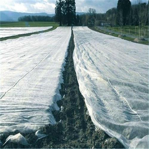 Environmental Protection Cover PP Non-Woven Fabric