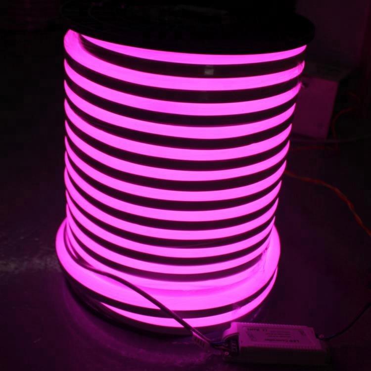 Low Power Consumption Waterproof IP65 Outdoor Billboard Performance Decoration LED Neon Lamp