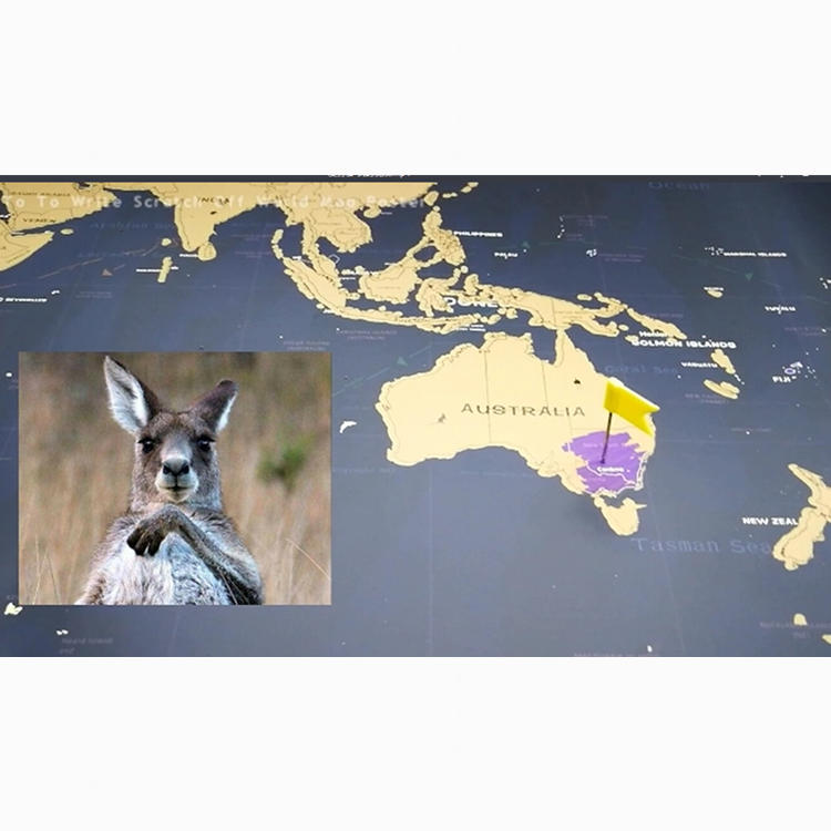To Make Travel Gold Foil Printing Elegant Global World Scratch Off Map