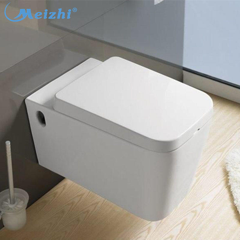 Sanitaryware wall mounted toilet seats