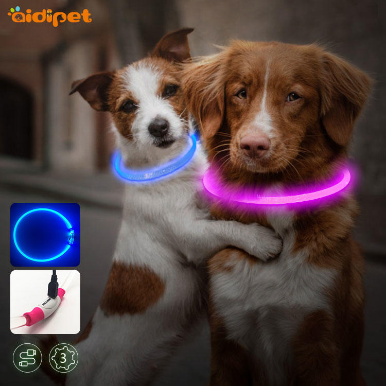 Newest Pet Accessories Outdoor Night Safety LED Dog Collar