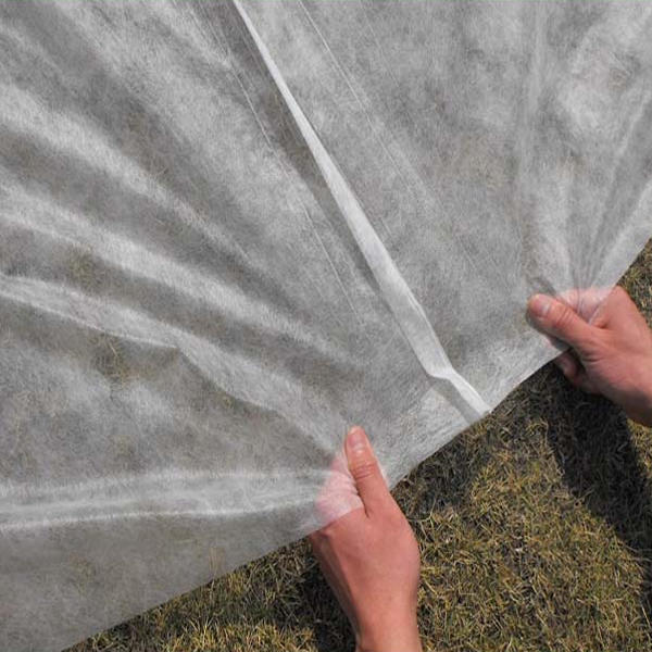 Banana Protection Bag Raw Material PP Spunbond Non Woven Fabric