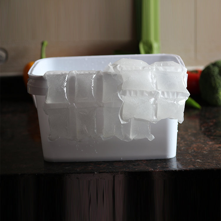 New Arrival Disposable Ice Gel Pack Small Cooler Bag for Shipping Food