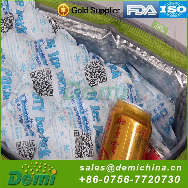 China Manufacture Professional Insulated Cooler Ice Cube Dry Ice Pack