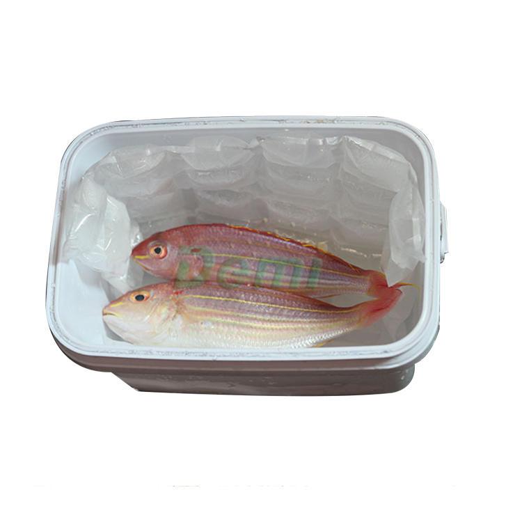 SAP Material Food Use Mini Instant Dry Ice Pack Bulk Cooler Bag