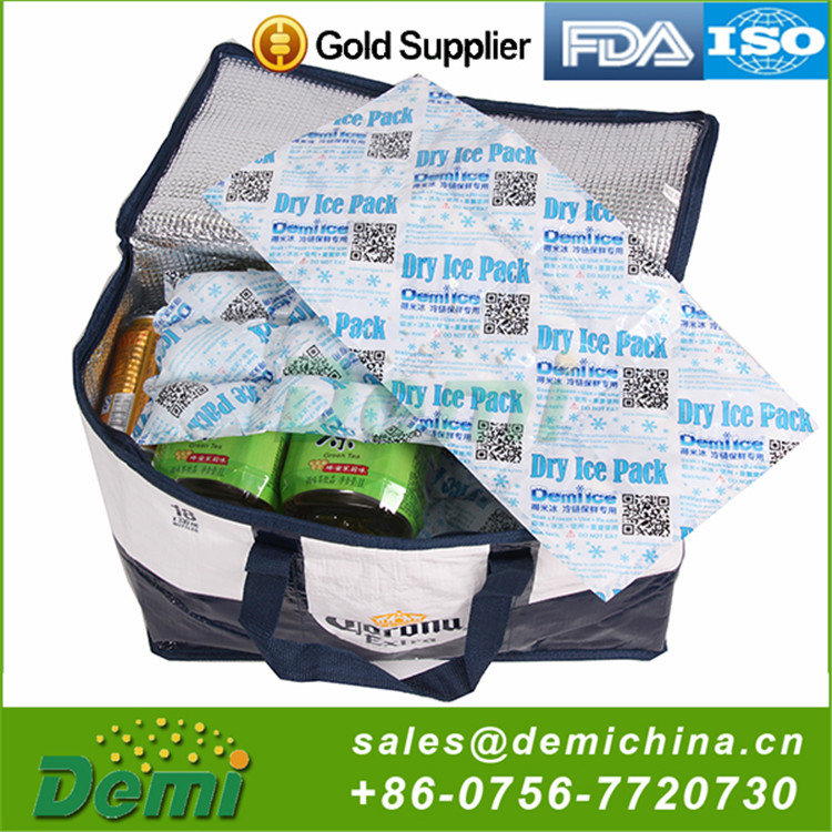 Sell WellIce Sheets Dry Ice Pack for Food Delivery