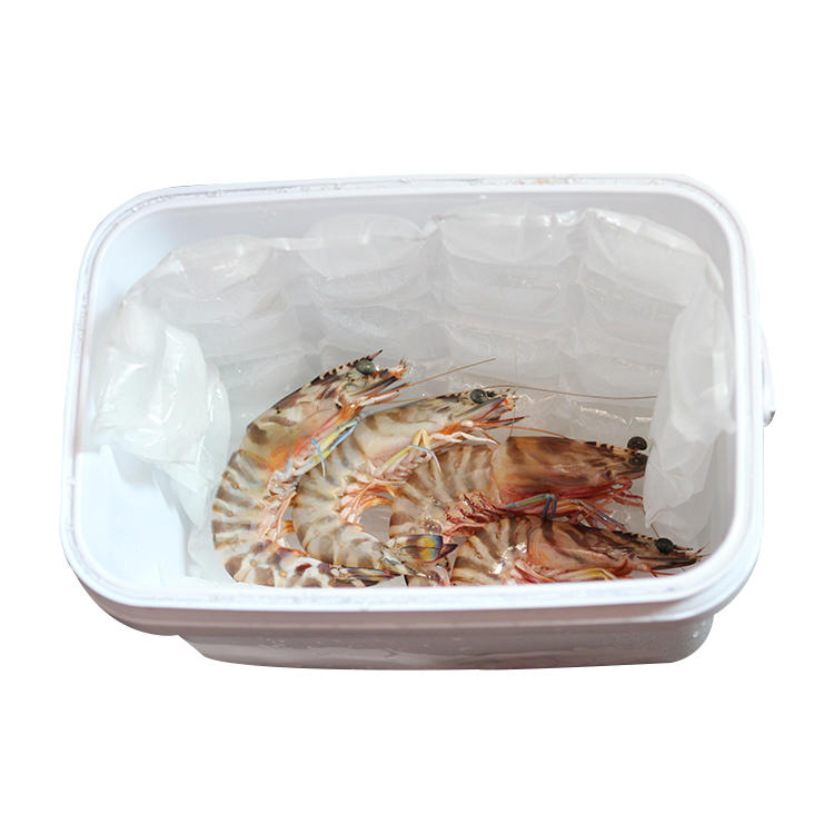 Preserving Cold Chain Seafood Fruit Reusable Gel Ice Pack for Lunch Box
