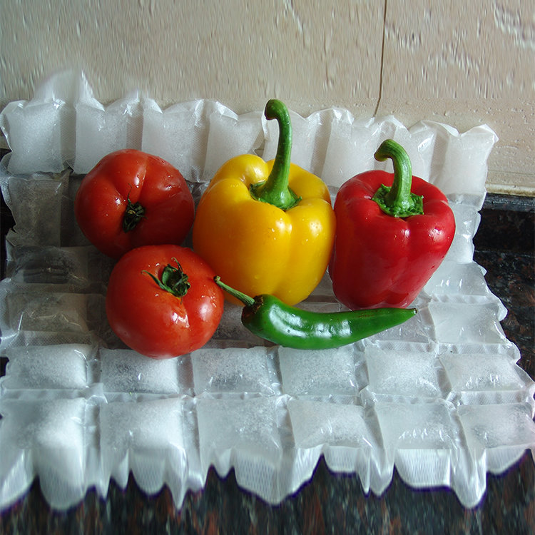 Food Use PE Material Escape-Proof Dry Ice Packs For Food Storage