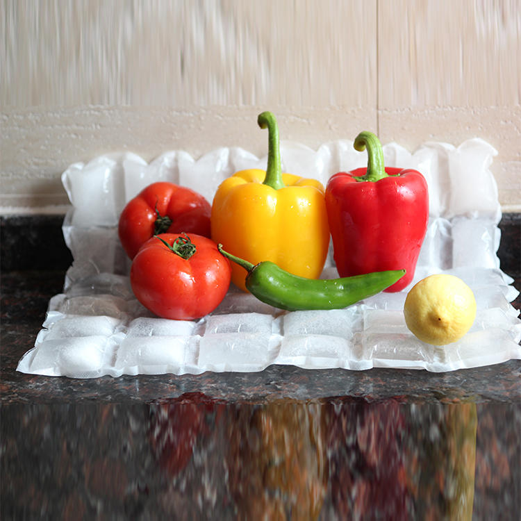 Reusable ice gel pack for food tranporting