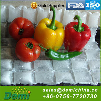 High Quality FDA,ISO9001,SGS Certification Custom Reusable Dry Ice Cooler Gel Dry Ice Cooler
