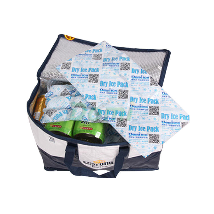 China professional manufacture techni ice reusable dry ice packs food grade
