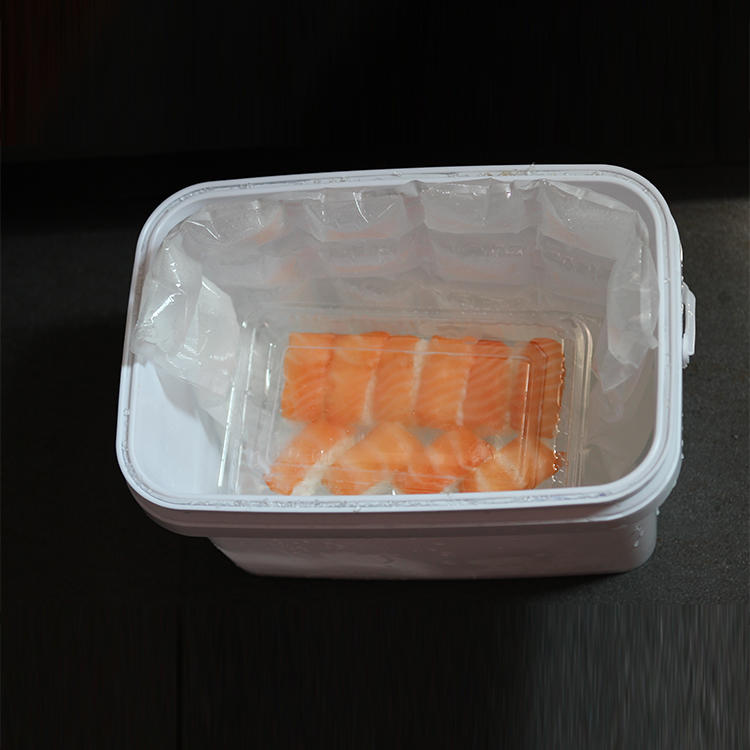 Disposable Plastic Dry Ice Pack For Fruit High Quality Dry Ice Pack