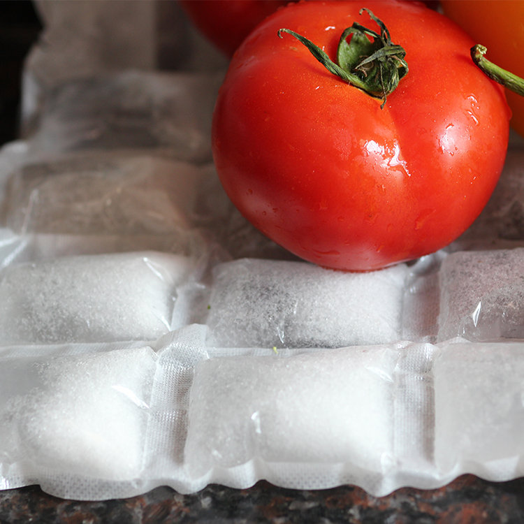 Low price guaranteed quality disposable dry ice packs instant ice pack