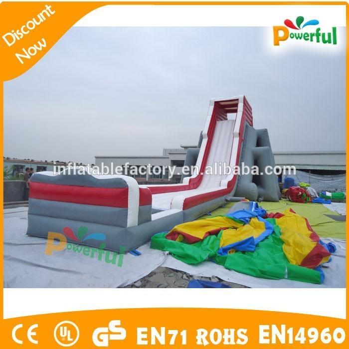 giant plato pvc inflatable water slide/hippo water slide