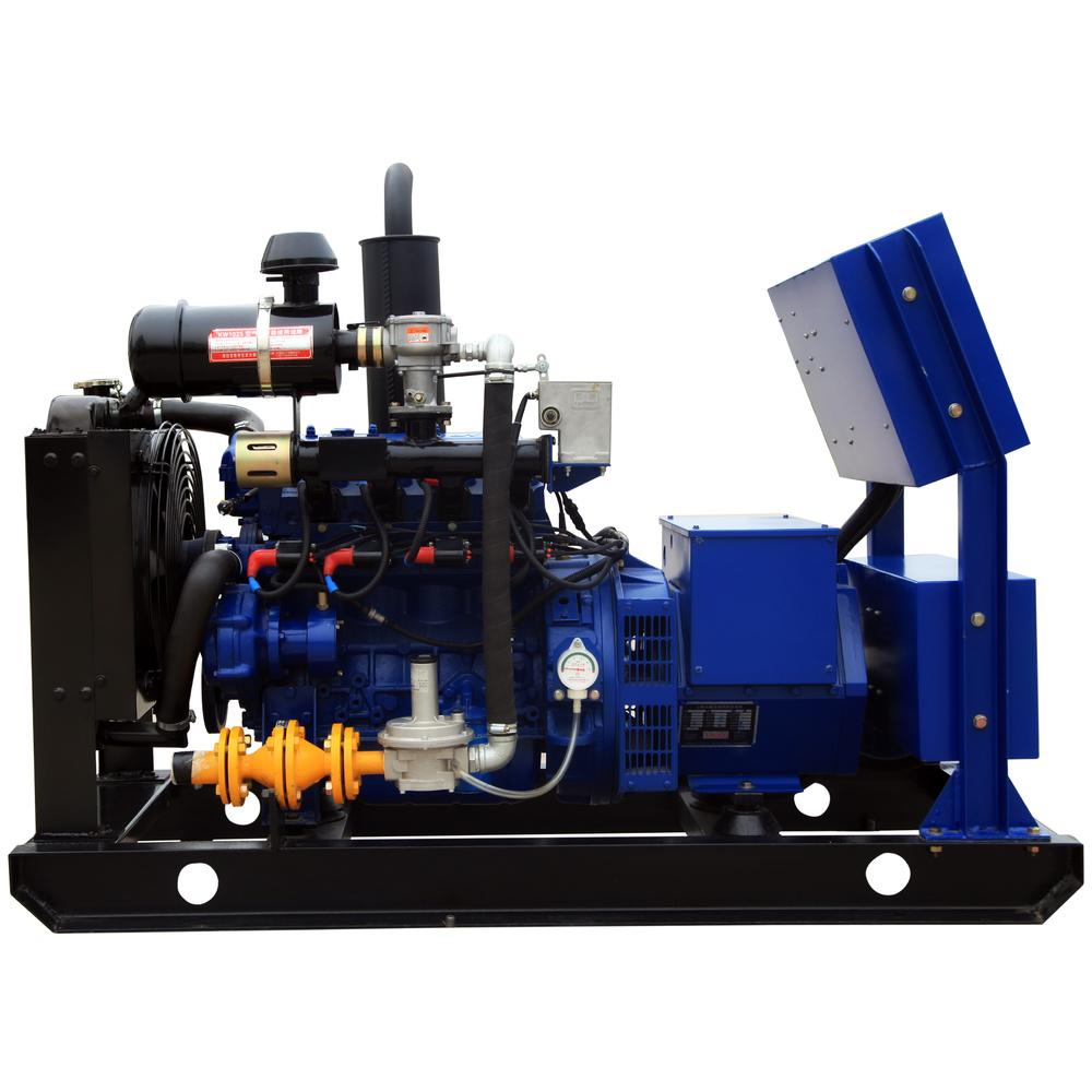 10KW Biogas/natural gas generator
