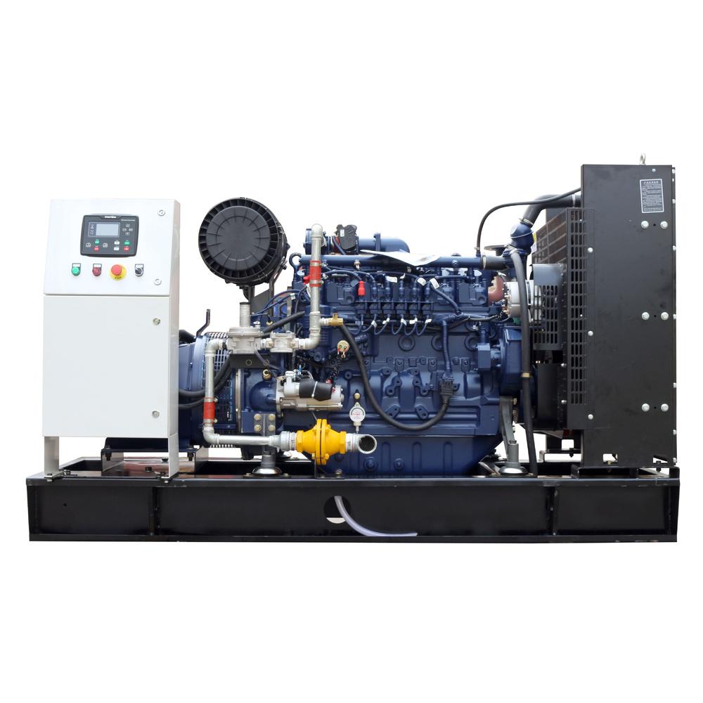 50kw Deutz water cooled 3 phase natural gas/biogas/LPG generator set price