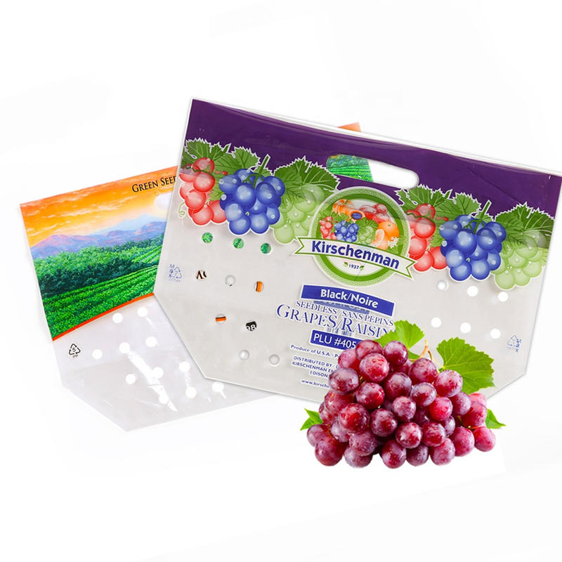 High Quality Custom Perforated Standup Bags for Fresh Fruit with Cheap Price