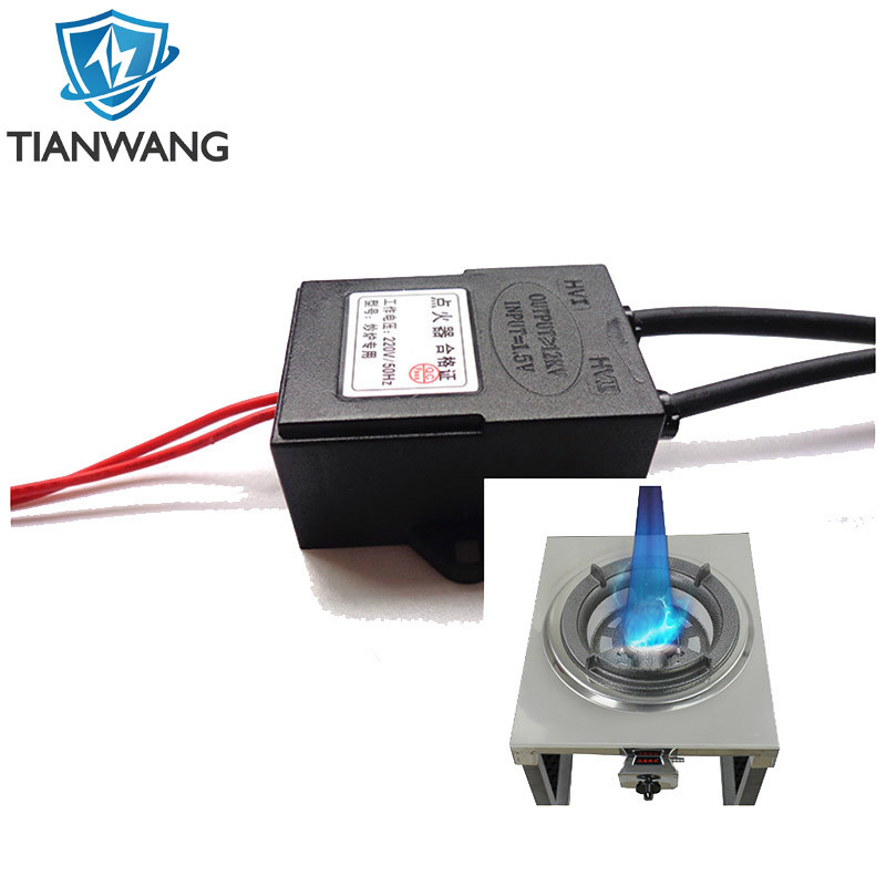 50~60Hz Frequency and 110VAC, 220VAC Voltage Electric Pulse Igniter