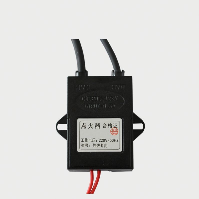 Electronic Pulse Igniter Electric Ignition Controller