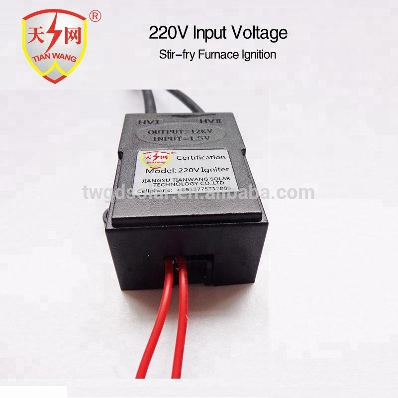 220V Input Ignition Coil Electronic Spark Igniter