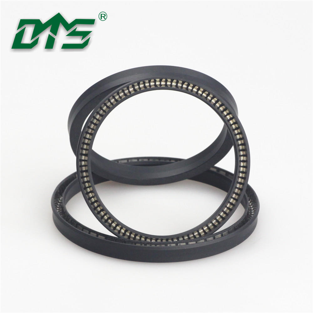 Vacuum pump PTFE Spring Energized Seal Design