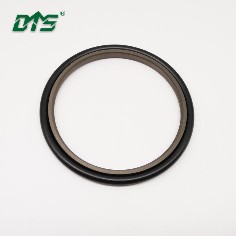 Hydraulic Seal,PTFE BronzeRod Sealing Elements