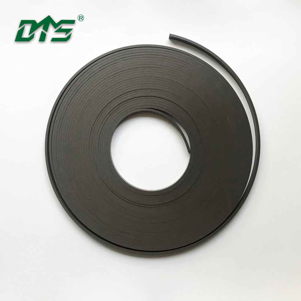 PTFE guide strip FKM band for seal ring GST