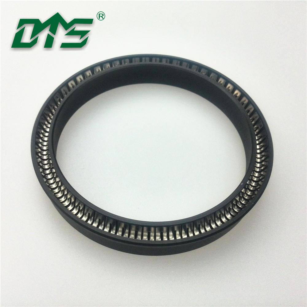Vacuum pump PTFE Spring Energized Seal Design