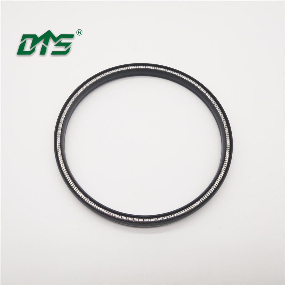 Chinese manufacturer variseal ptfe spring energized oil double lip seal