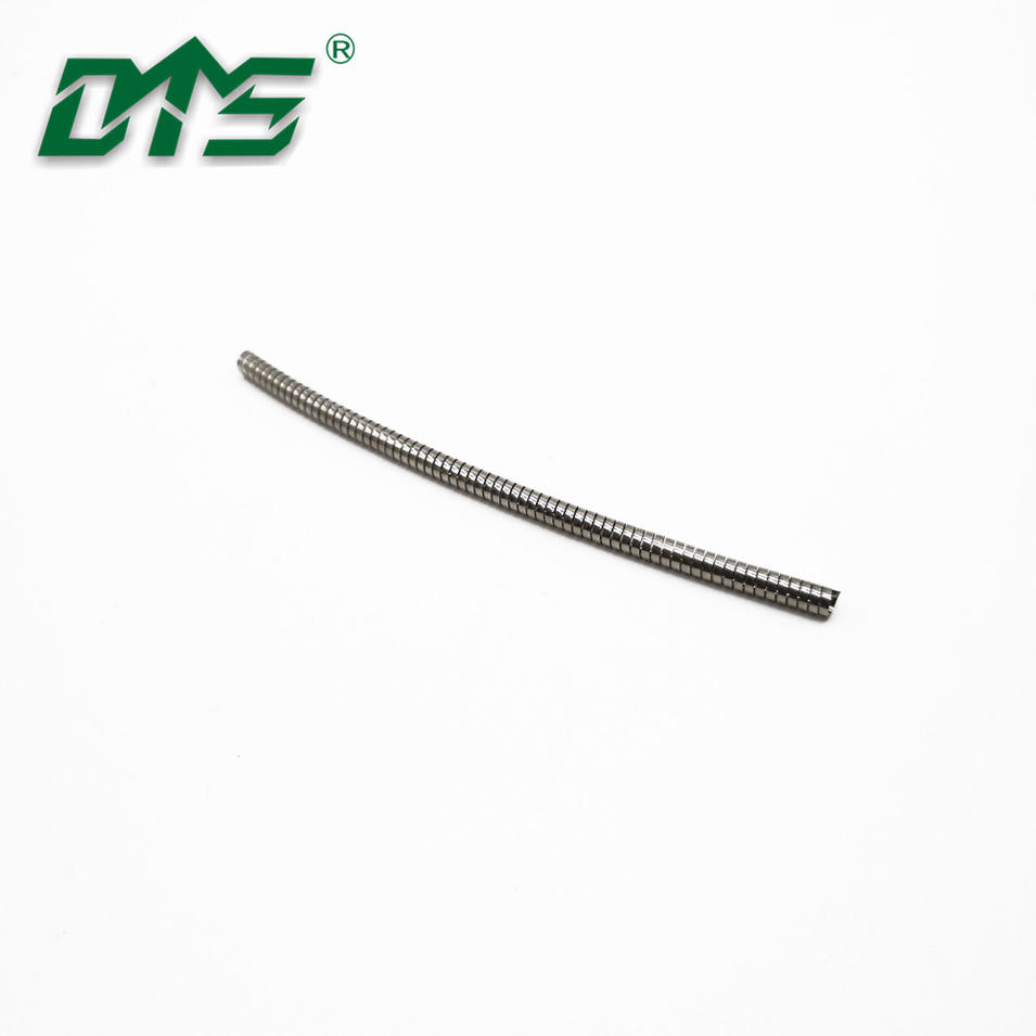 High Quality Customized Stainless Steel 304SS and 316SS Spring For Spring Energized seal