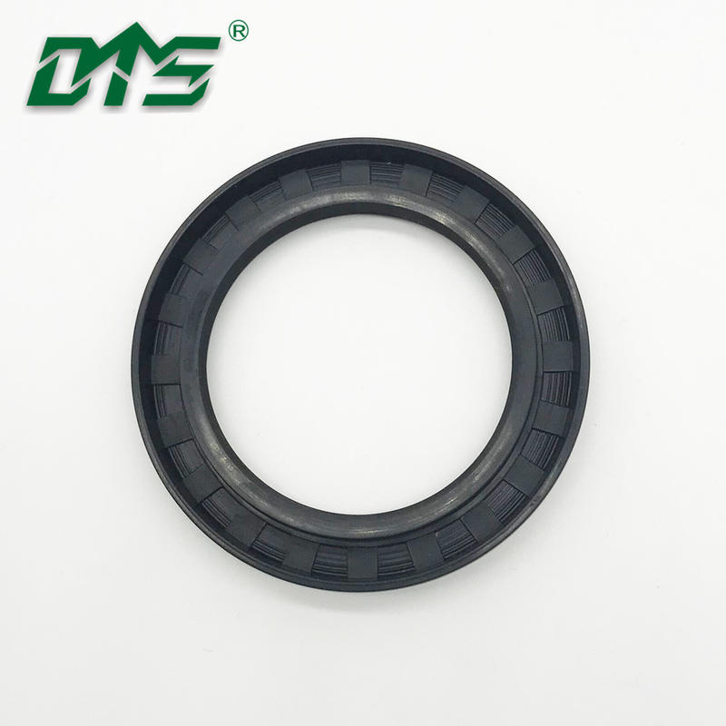NBR/FKM/FPM Rubber Oil Seal