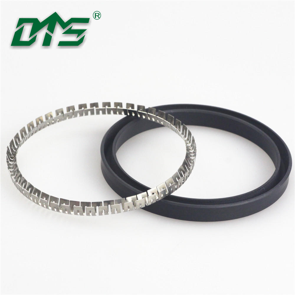 Double Lip Oil Seal,Spring Energized Lip Seal