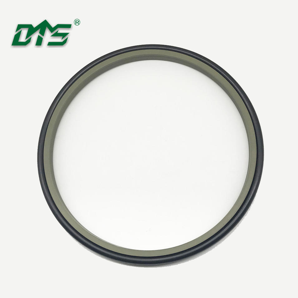 DMS Filled Bronze PTFE Bearing Seals /Rod Seals