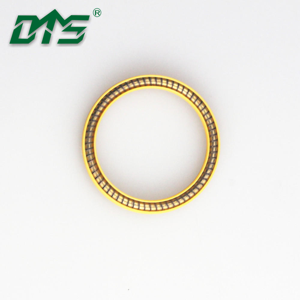 Preventing Leaks UPE Spring Energized Seals used to Cryogenic LNG Valves