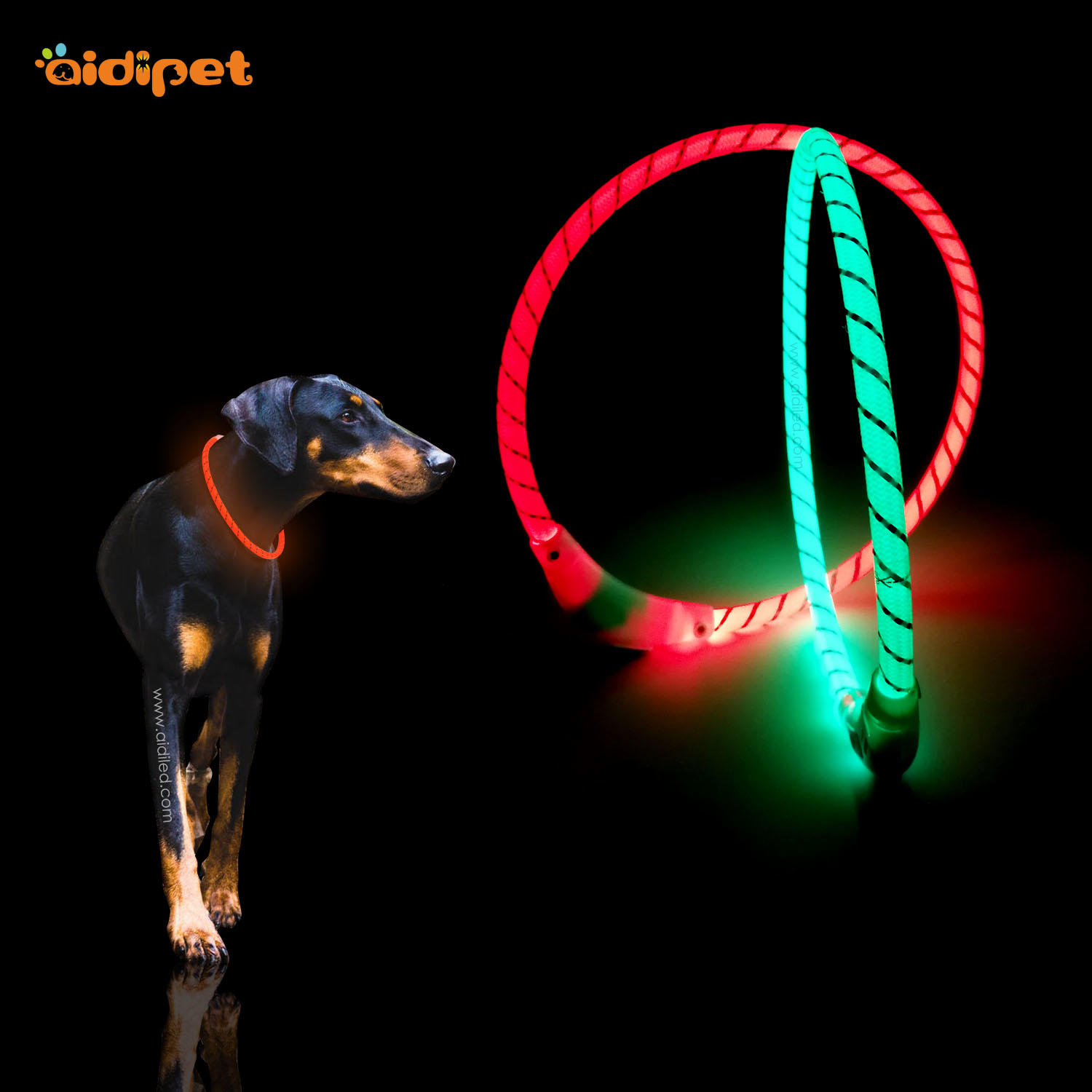 LED bright nylon dog collar in the dark night