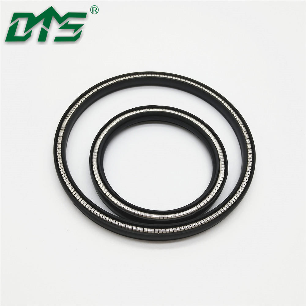 Spring Energised PTFE Seals