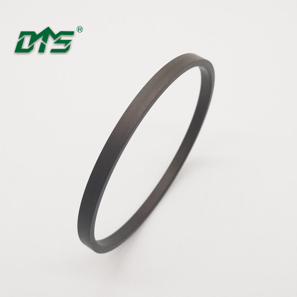 shaft seal retaining hydraulic rod ring glyd ring GSI