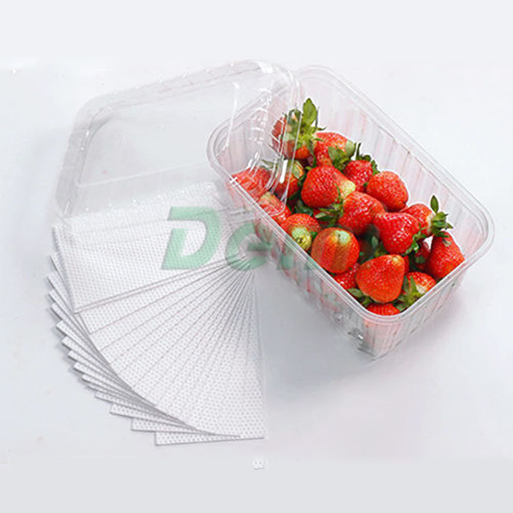 Home UseFood Absorbent Pad For Fish Poultry Meat Fruits and Vegetables