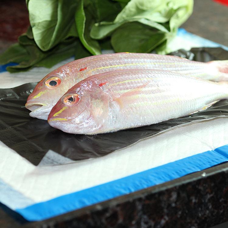 Customized OEM Blue Seafood Absorption Anti-leakage Preservation Mat
