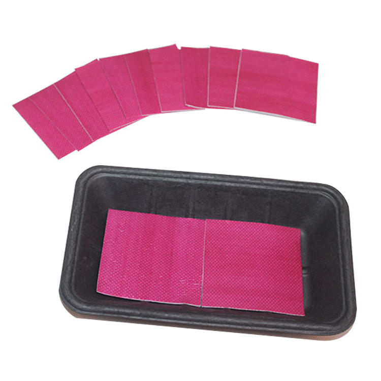 Eco-Friendly Material Biodegradable Water Absorbent Food Pad