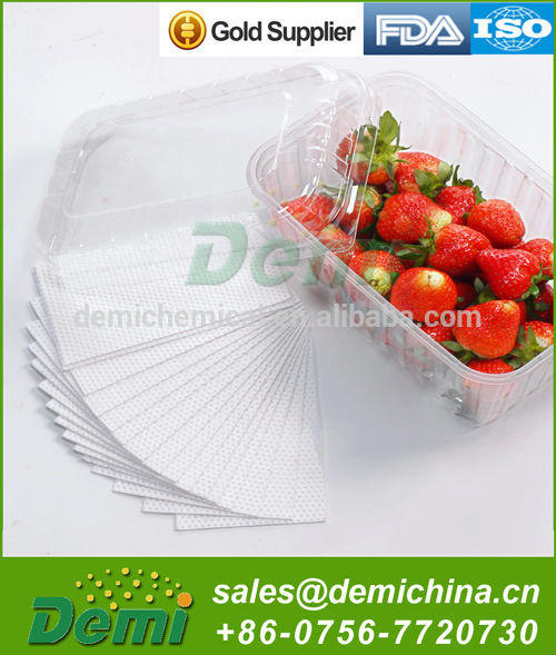 Frozen Meat/Seafood/Vegetalbe/Fruit Absorbent Pad