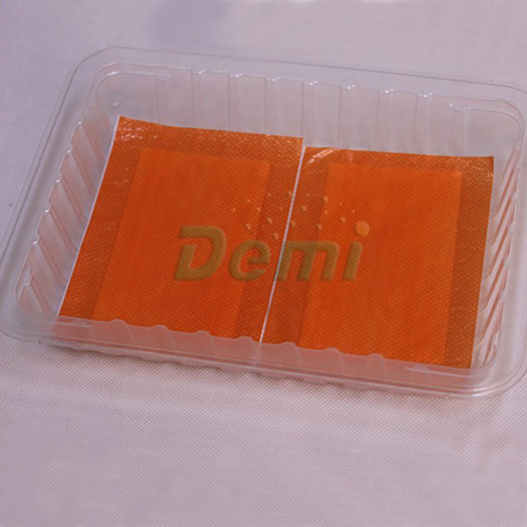 Fresh Food Tray Packaging Absorbent Meat Pads