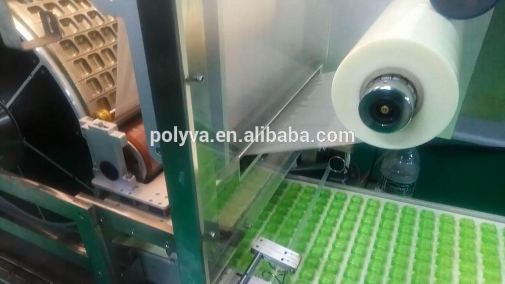 Polyva machine multi-function laundry detergent pva capsules bag packing packaging machine laundry pods filling machine