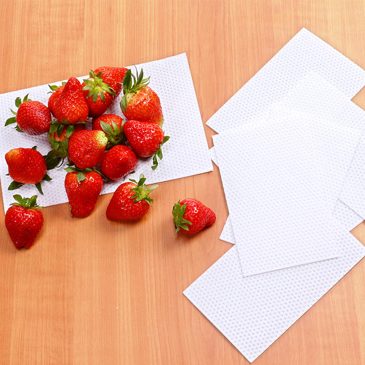 Moisture Vegetables Food Absorbent Pad Food Tray Pad For Fruit