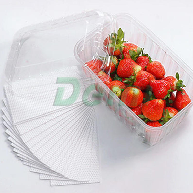 Food Tray Packaging Vegetables Fruit Absorbent Pad