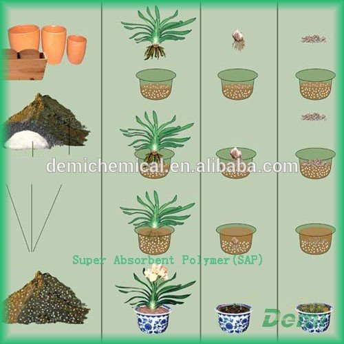 Equitable Prices Biodegradable Organic Super Absorbent Polymer Sap For Agriculture Use