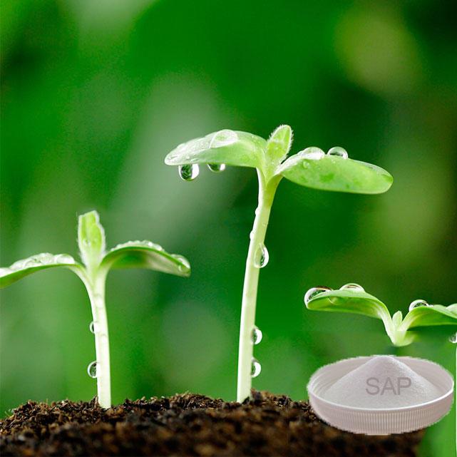 Wholesale Biodegradable Agricultural Sap Polyacrylate Potassium Polymer Powder